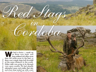 0_red-stags-in-cordoba.jpg
